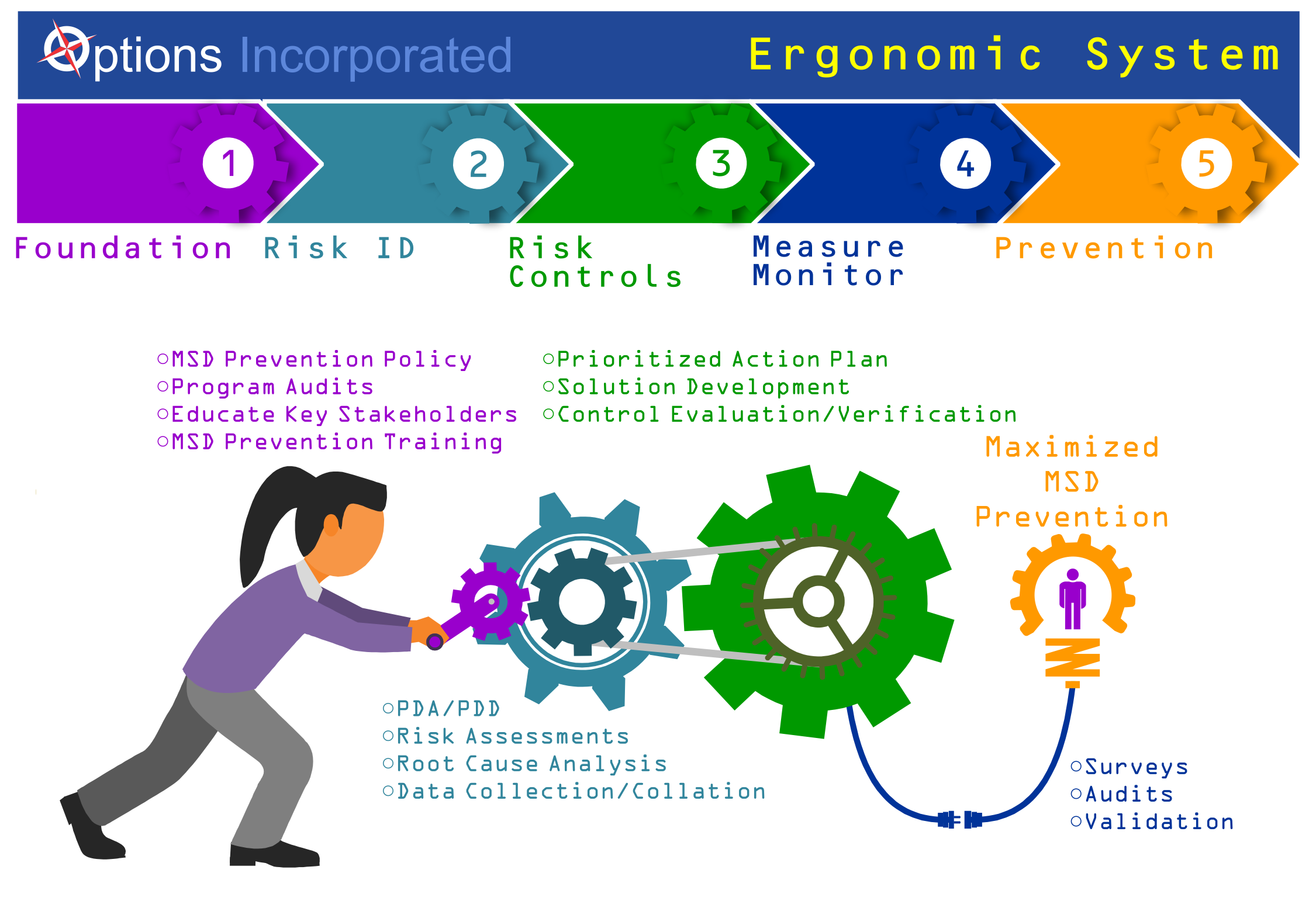 Options Incorporated Ergonomic System Infographic